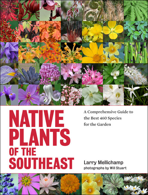 native-plants-of-the-southeast